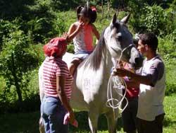 Reconocen en Camagüey labor integral del Centro de Equinoterapia