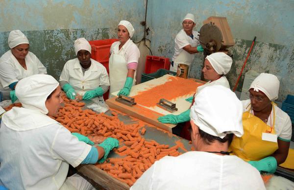 Reconocen a entidades camagüeyanas de la Industria Alimentaria