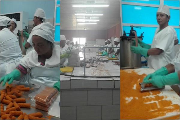 Incrementan capacidad productiva industrias de Empresa Pesquera de Camagüey