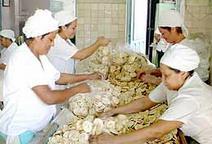 Enviadas a Santiago de Cuba 195 toneladas de alimentos desde Camagüey