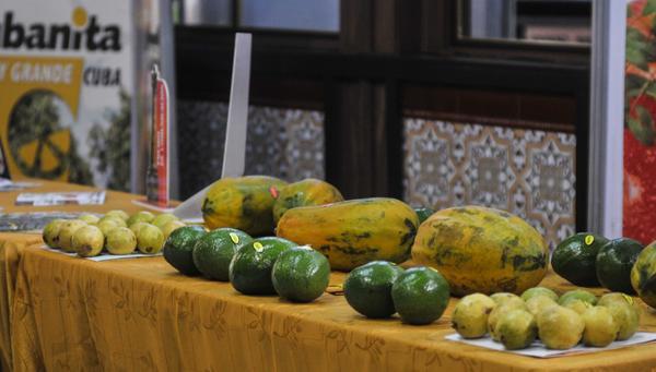 Promueven en Cuba aportes de la fruticultura a la seguridad alimentaria