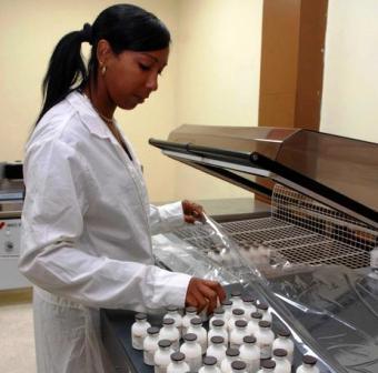 Cuba inmunisera un million de têtes de bétail avec médicament mis au point par des scientifiques camagüeyanos