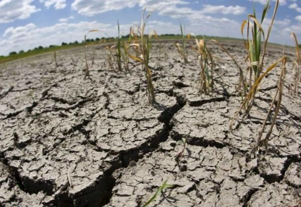 Alerta Guterres sobre emergencia climática que enfrenta el planeta