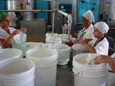 Próxima a reiniciar producciones en Camagüey fábrica de helados Coppelia