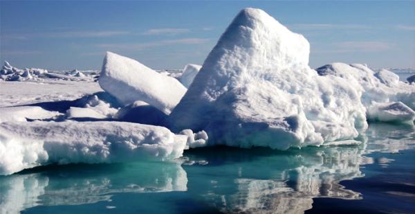 Alertan expertos sobre pérdida del hielo antártico