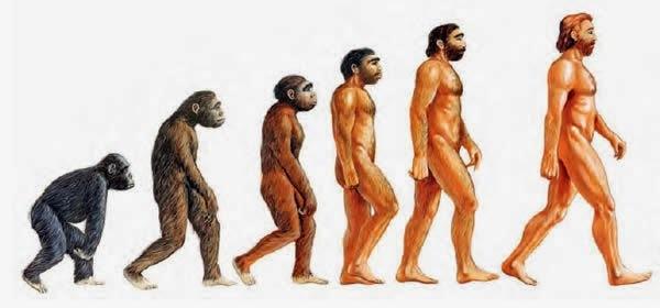 Investigador desmiente causa principal de la aparición del Homo sapiens