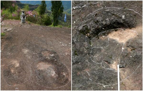 Encuentran en China huellas de dinosaurios de hace 100 millones de años
