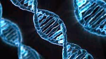 Cuba y Japón debaten experiencias sobre imágenes moleculares