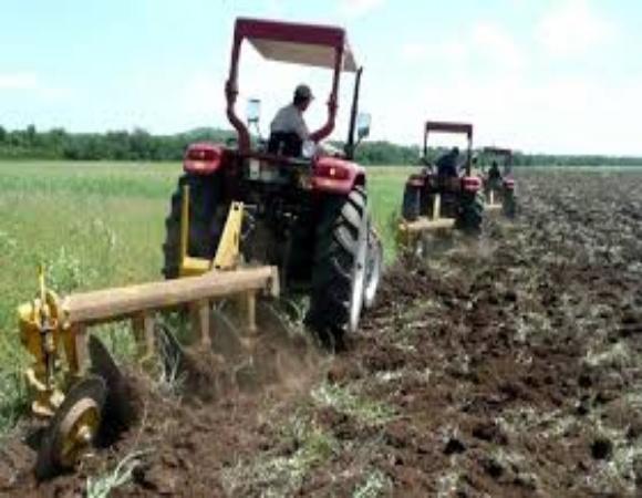 Trabajan en Camagüey para desarrollar con éxito campaña de siembra de primavera