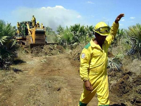 Convocan en Camagüey a incrementar acciones para prevenir incendios forestales