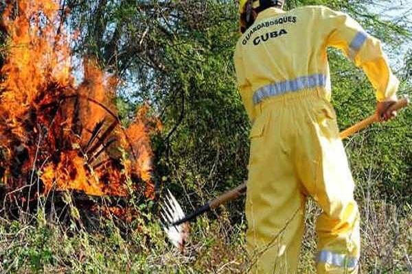 En 10 años ocurrieron en Cuba más de tres mil 900 incendios forestales