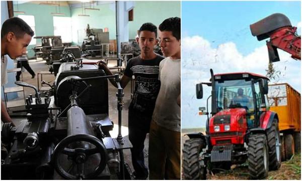 Reconocen a TRANZMEC Camagüey como Centro de Producción Docente