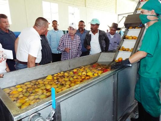 Insta Machado Ventura a cultivar la tierra en beneficio del pueblo camagüeyano