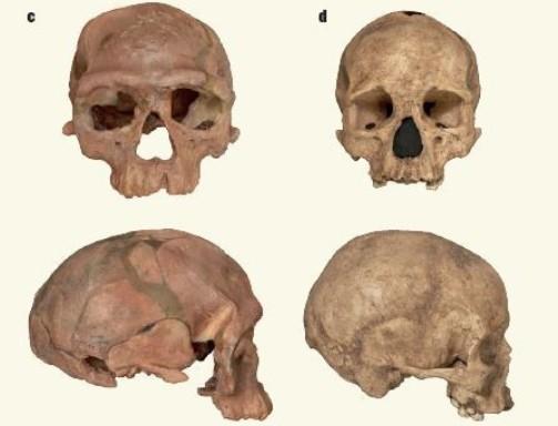 Hallan en Marruecos restos más antiguos del Homo sapiens