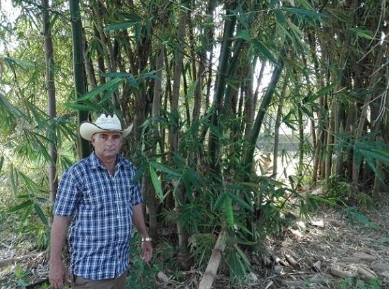 Positivos resultados de agricultura orgánica en finca camagüeyana dedicada a frutales (+ Fotos)