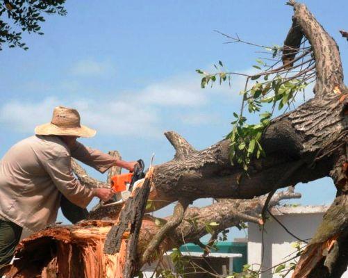 La población de Esmeralda se prepara ante proximidad de Irma (+ Audio)