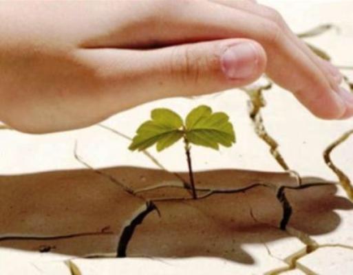 Crecen desafíos medioambientales, advierte ONU