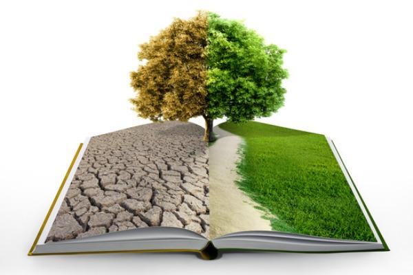 Centro de Investigaciones del Medio Ambiente en Camagüey aporta al desarrollo sostenible