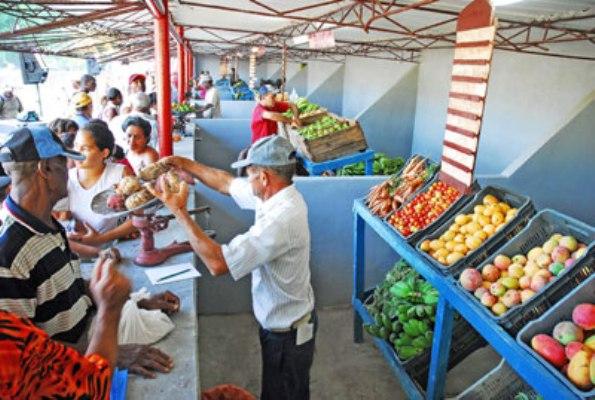 Adoptan en Cuba medidas para ordenar comercialización de productos agrícolas (+ Listado de precios)