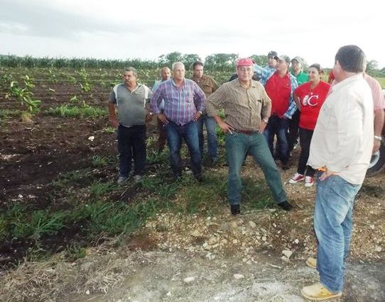 Ministro de la Agricultura evalúa en Camagüey proyecto de desarrollo ganadero