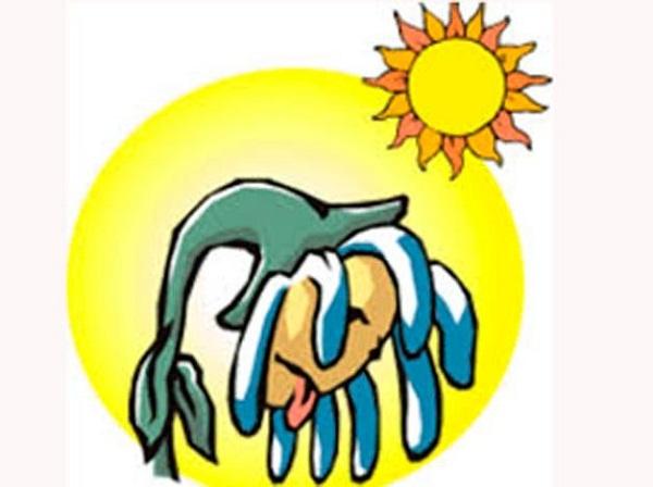 Camagüey: mucho calor y escasas lluvias