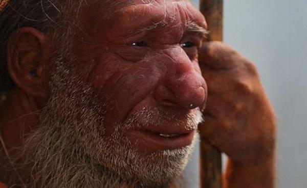 El rostro de los neandertales los ayudó a sobrevivir