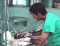 Mejora Camagüey índice de sobrevida en nacidos con bajo peso