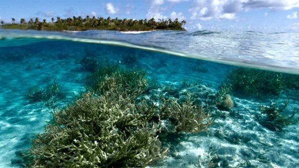 Más de la mitad de los océanos exhibe señales del cambio climático