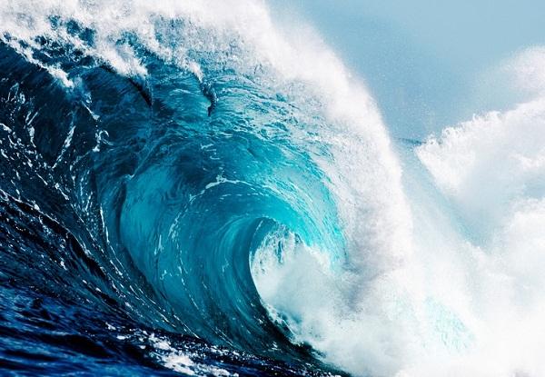 Gigantesca ola en Nueva Zelanda implanta récord para hemisferio sur
