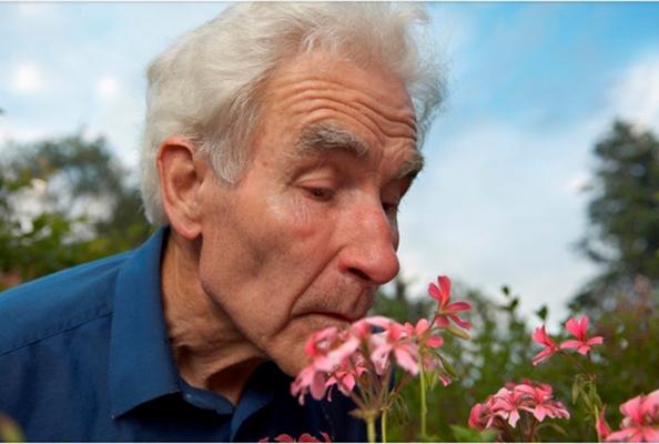 Estudiosos relacionan la pérdida del olfato con riesgo de demencia senil