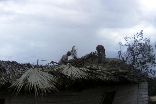 La fuerza de la recuperación en Palma City, Esmeralda (+ Fotos)