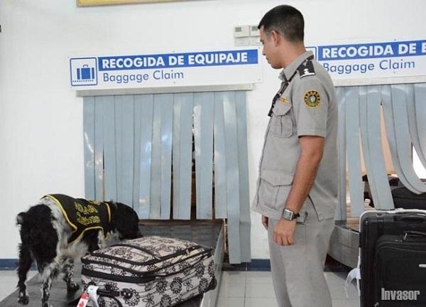 Prioridad en Cuba al enfrentamiento al tráfico y consumo de drogas