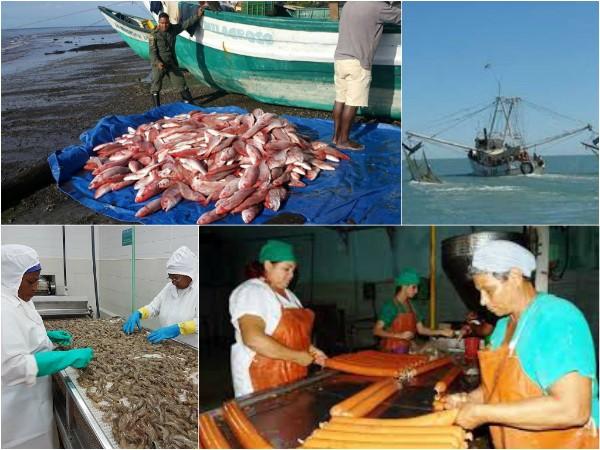 Industria Alimentaria y de la Pesca en Camagüey por nuevos surtidos y mayor calidad