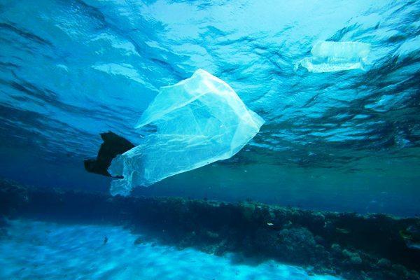 Alerta ambiental por presencia de residuos plásticos en el Ártico