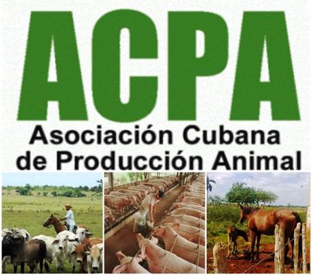 Analizan en Camagüey proyecciones de la producción animal