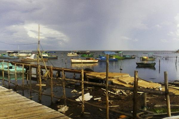 Puerto Piloto, donde renace la solidaridad (+ Fotos)