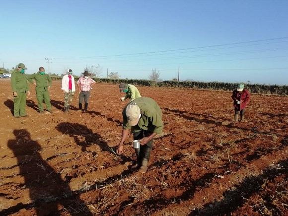 Llaman en Camagüey a producir más y mejor