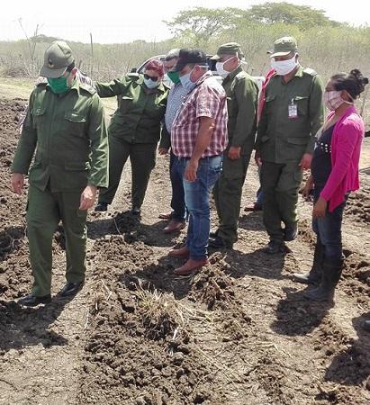Chequea Consejo de Defensa Provincial áreas cultivables en municipios camagüeyanos de Jimaguayú y Najasa (+ Fotos)