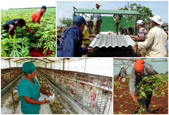 Analizan en Camagüey resultados de la economía y avances de la recuperación