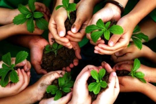 Aplica Cuba numerosas estrategias contra la desertificación y la sequía