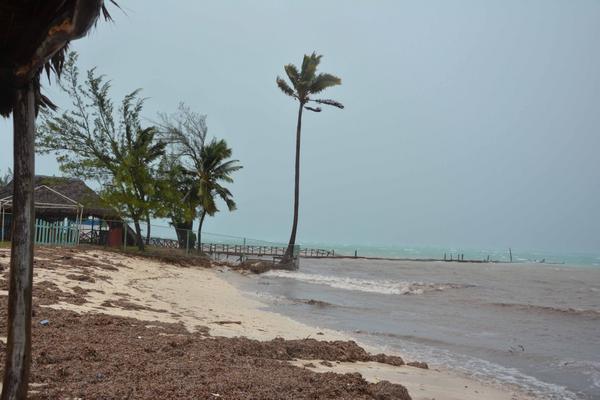 Ejecutan en Camagüey acciones para mitigar efectos del cambio climático en zonas costeras