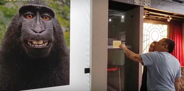 Abre novedoso Museo del Selfie en Los Ángeles