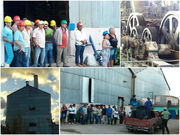 Central Siboney: first of Cuba to fulfil the small harvest
