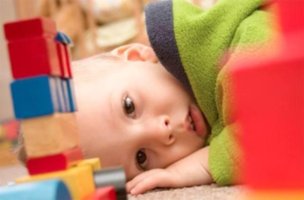 Minicerebros de origen humano posibilitarán estudiar el autismo