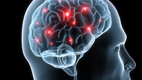Estudios desmienten teoría sobre uso del 10 % del cerebro humano