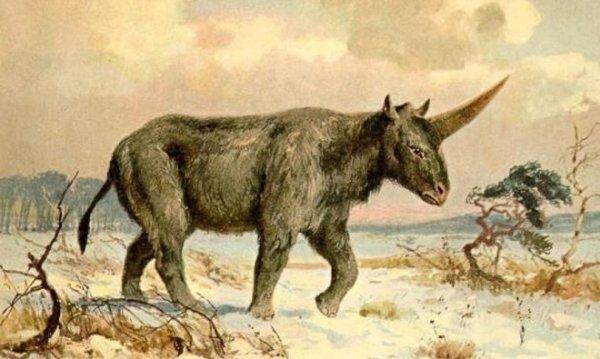 Corroboran científicamente antigua coexistencia entre unicornios y humanos