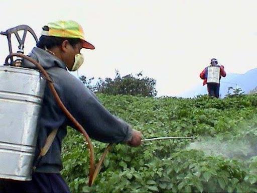 Promueve INIVIT en Camagüey control biológico de enfermedades y plagas