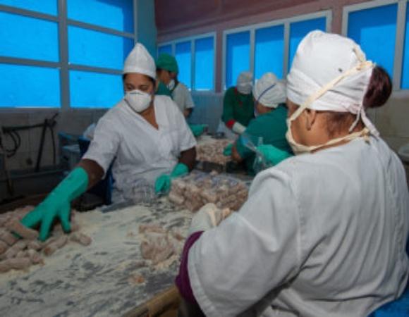 Redobla Industria Alimentaria en Camagüey medidas higiénico sanitarias frente a la COVID-19