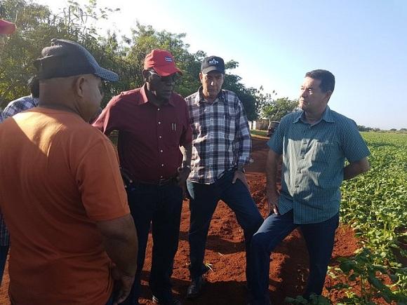 Chequea Valdés Mesa inversiones en el sector agropecuario en Artemisa