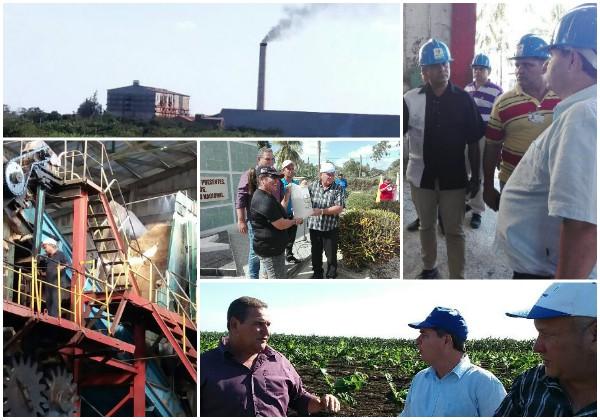Vertientinos realizan importantes aportes a la economía camagüeyana
